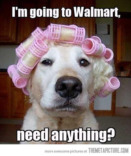 If I hadn't actually seen people in Walmart with curlers in, this wouldn't have been nearly as funny.