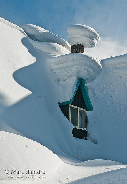 ❆ ❄ ❆ really snowed in...:-)