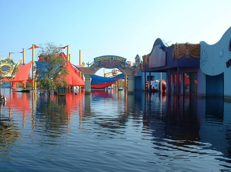 six flags trip essay Curriculum unit: learning via the virtual field trip: learning via the virtual field trip by julie vitulano, new york city public schools on this virtual wild safari, students are invited.