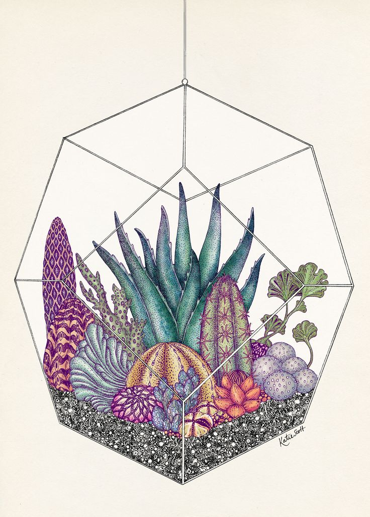 Katie Scott - London-based illustrator is inspired by natural studies and the history of botanical art. Her beloved themes are fauna & flora, which she uses consistently to design wallpapers, book covers and
