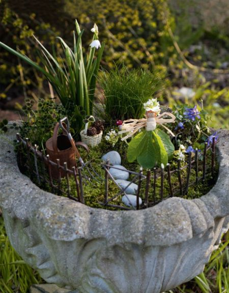Отличная идея для участка – мини сад в горшке ( 85 фото)