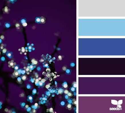 1984 best colors palettes images on pinterest Navy purple color