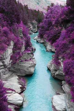 Purpless