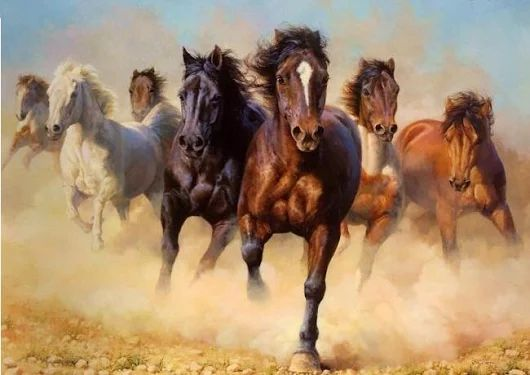 Ewelina kupuje jedno końskie życie w Skaryszewie !! Bądź też dawcą życia !!