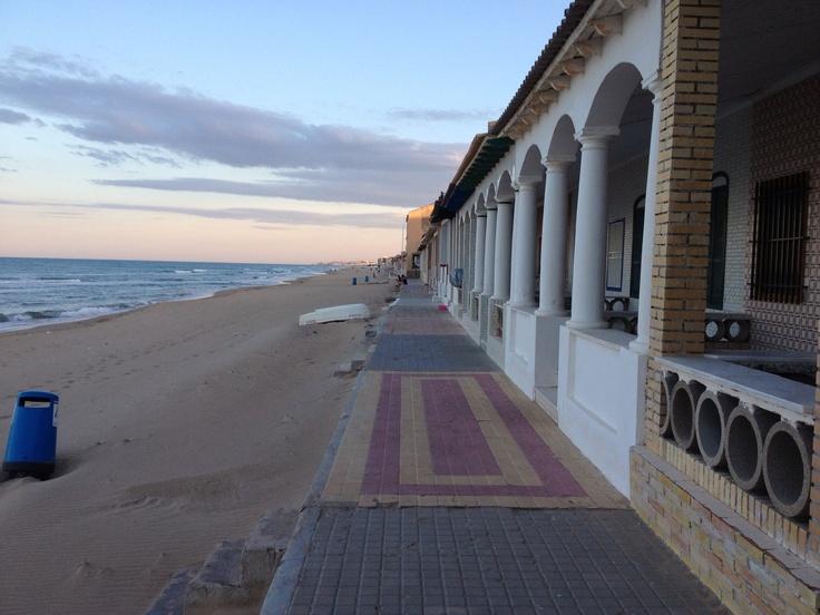 Guardamar del Segura  El turismo es, actualmente, el gran dinamizador de la economía local. También tienen importancia la construcción y la agricultura de regadío