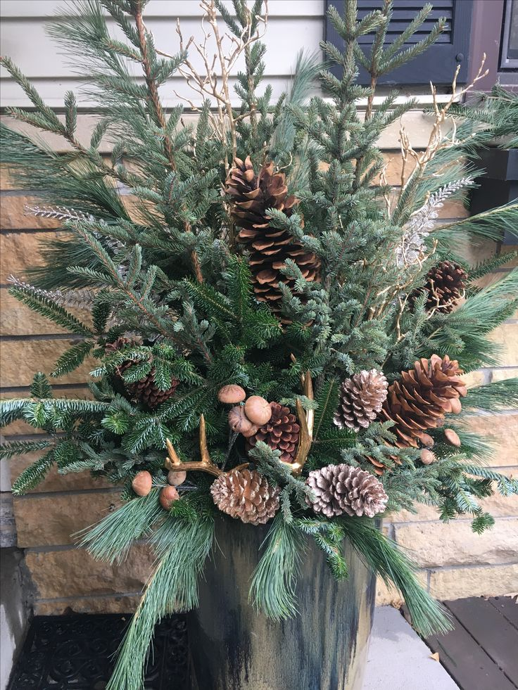 Winter pot: Balsam fir, spruce and white pine with gold accents and gold antlers!