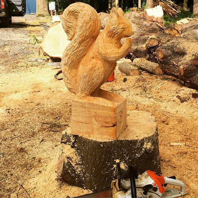 Best tree stump images on pinterest carved wood