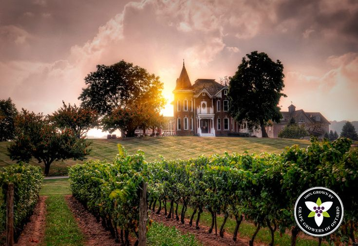 10 Romantic Wineries for your Wine Country Getaways