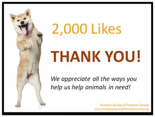 Thank you for helping us reach 2,000 likes! We'd love that number to be even higher, so even more people can see what our life-saving shelter is doing. If one person (not currently affiliated with us) hears about our efforts and it helps save lives in their community, how cool would that be? Please keep spreading the word. Lives everywhere depend upon your help.