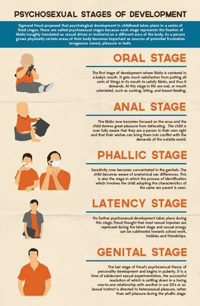 Stages of Development by Arthur Germer, via Behance.  Psychosexual Development: that human beings, from birth, possess an instinctual libido (sexual energy) that develops in five stages. Psychodynamic Theory:  interested in the dynamic relations between conscious motivation and unconscious motivation.