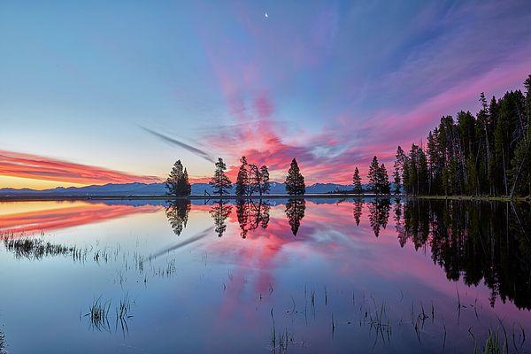 Artwork Photograph - Gull Point At Sunrise by Jon Glaser
