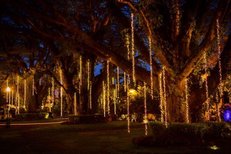 Hacienda casasano jardin cuautla morelos mexico garden xvi for Jardin xochicalli cuautla