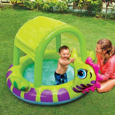 Intex Seahorse Baby Pool & Reviews | Wayfair