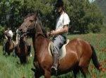 Rutas a caballo. Ver link para consultar las empresas--- Routes a cheval. Voir link pour consulter les entreprises.