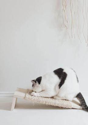 Comme promis voici le petit DIY d'un grattoir pour chat ! Et oui, on les aime nos petits animaux mais ils ont tendance à faire leurs griffes partout alors pour y remédier sans dépenser 50€ dans un ...
