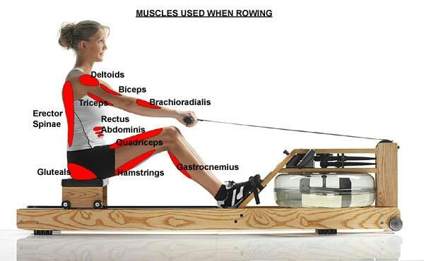 Discover ideas about Workouts Without Equipment. Benefits of the Rowing Machine: ...