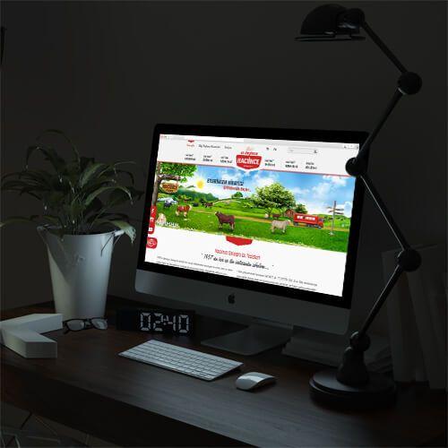 Hacıince Entegre Et Tesisleri - Website Tasarımı - Web Design
