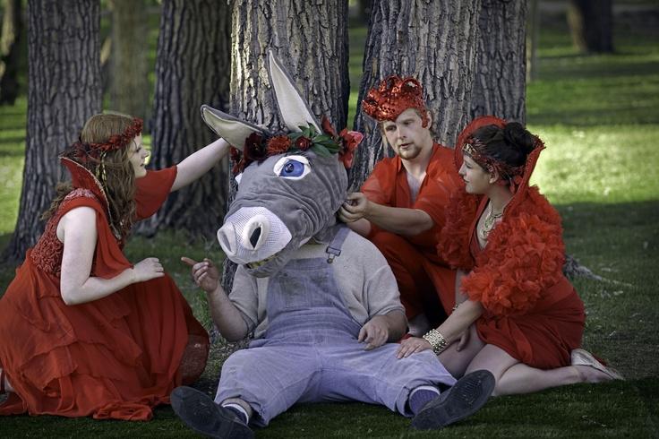 A Midsummer Night's Dream - Shakespeare in the Park. Photo by Trudie Lee; (left to right) Amanda Davis, Grayon Ogle, Steven Evanik, Lauren Steyn.