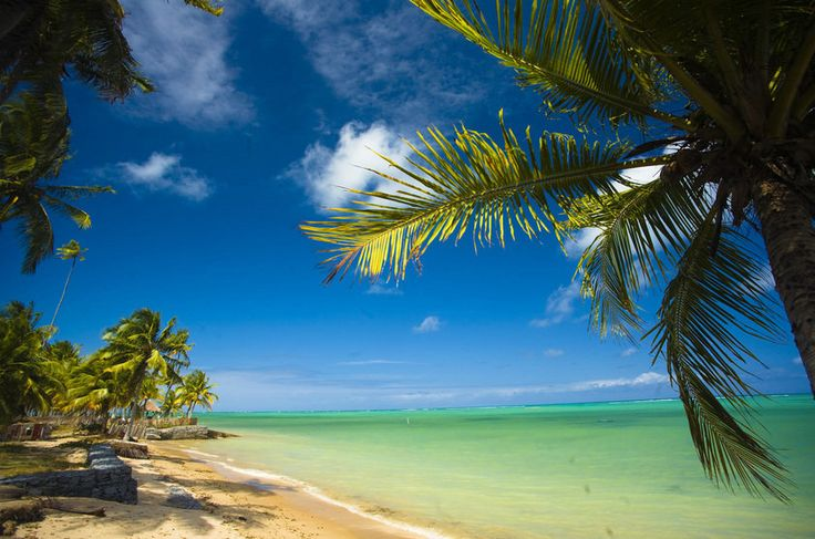 Praia do Patacho, na Rota Ecológica, em Porto de Pedras, Alagoas