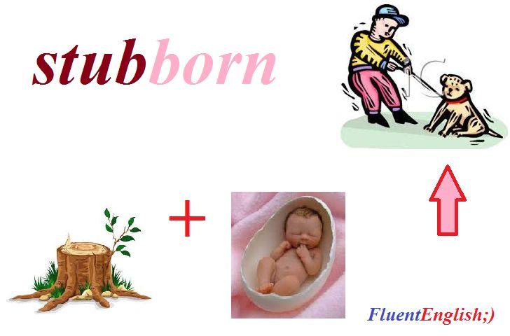 stub + born = stubborn! (упрямый)   #английский #английскийрепетиторы #английскийслова #английскийскайп #английскийвесело #английскийпоскайп #fluentenglish #английскийразговорный #учитьанглийский #курсыанглийского #английскийонлайн