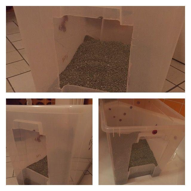 Günstiges Katzenklo!  Kunststoffkiste kaufen - Loch einsägen - Streu reingeben - fertig! Das Loch kann vorne sowie auch im Deckel sein - je nach Wunsch. 🐾😺