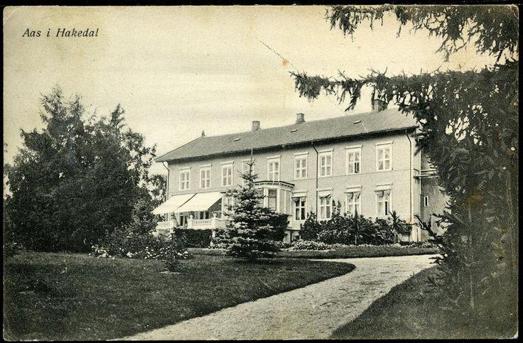Akershus fylke Nittedal kommune, Hakadal Aas Gård i Hakedal Utg Haraldsens Kunstforlag. Stemplet 1919