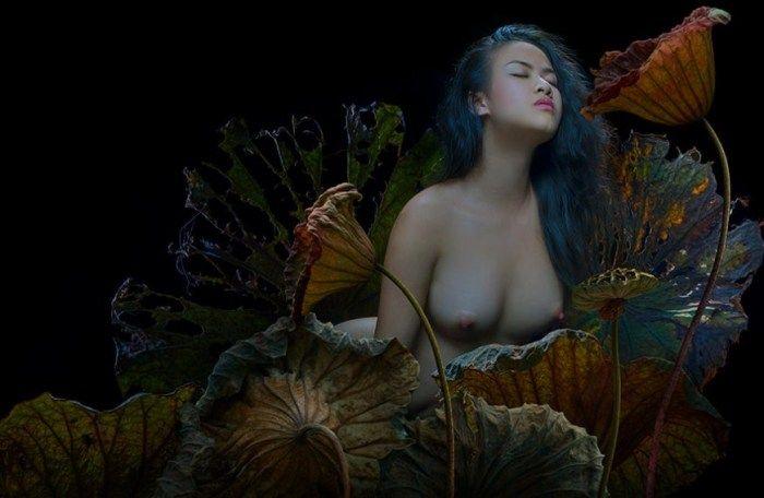 Тихая ночь. Автор: Duong Quoc Dinh.
