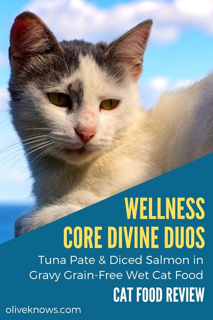 Wellness Core Divine Duos Tuna Pate Diced Salmon In Gravy Grain Free Wet Cat Food Review Cat Food Reviews Wet Cat Food Best Cat Food
