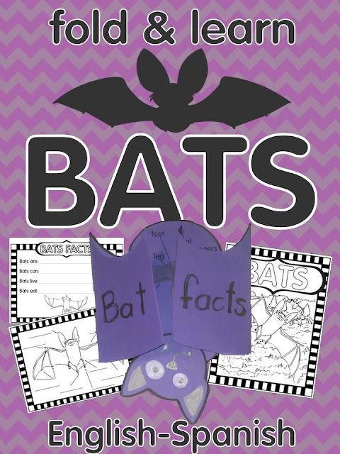 Bats fold & learn activity English and Spanish- great for bat info writing.