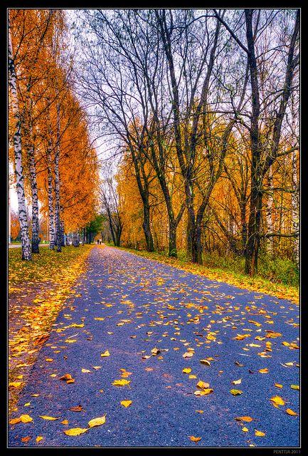 Fall colors, Lake Iidesjärvi, Tampere, Finland