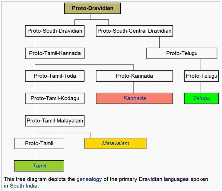 57 best images proto dravidian is the proto language of the dravidian languages it is thought to have differentiated into proto north dravidian proto central ccuart Image collections