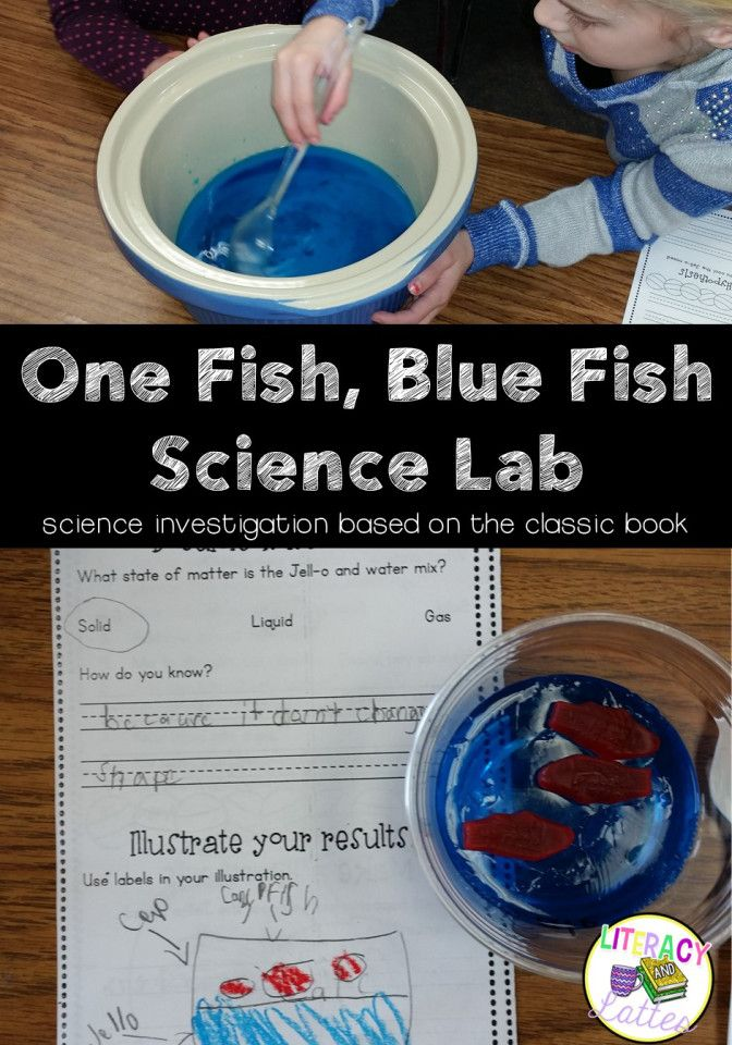 Science for Dr. Seuss Week!  Make One Fish, Two Fish, Red Fish Blue Fish Jell-o with your class and learn about States of Matter!
