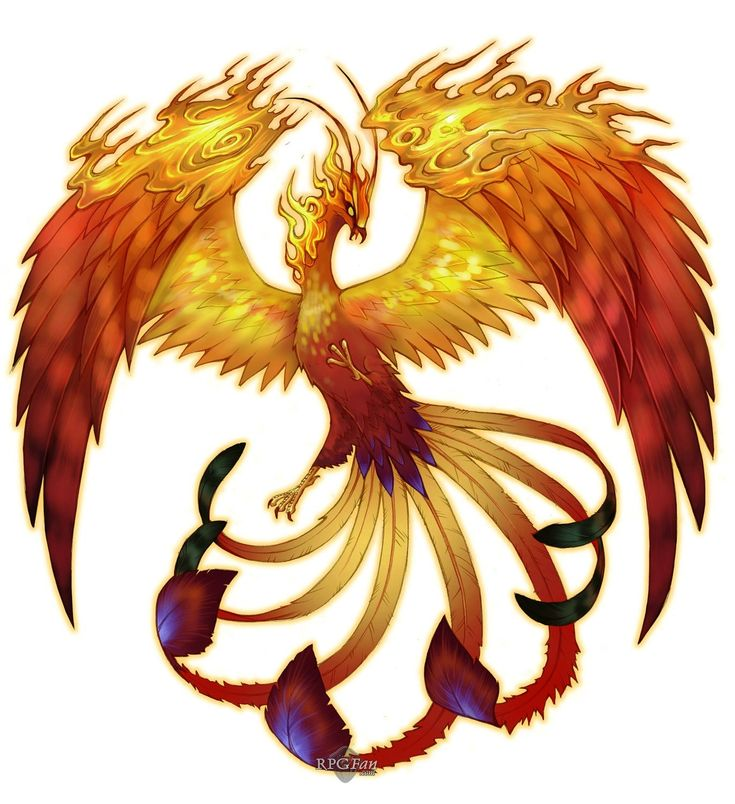 When I was younger I was mesmerized by the phoenix, so naturally I had to write stories about them.