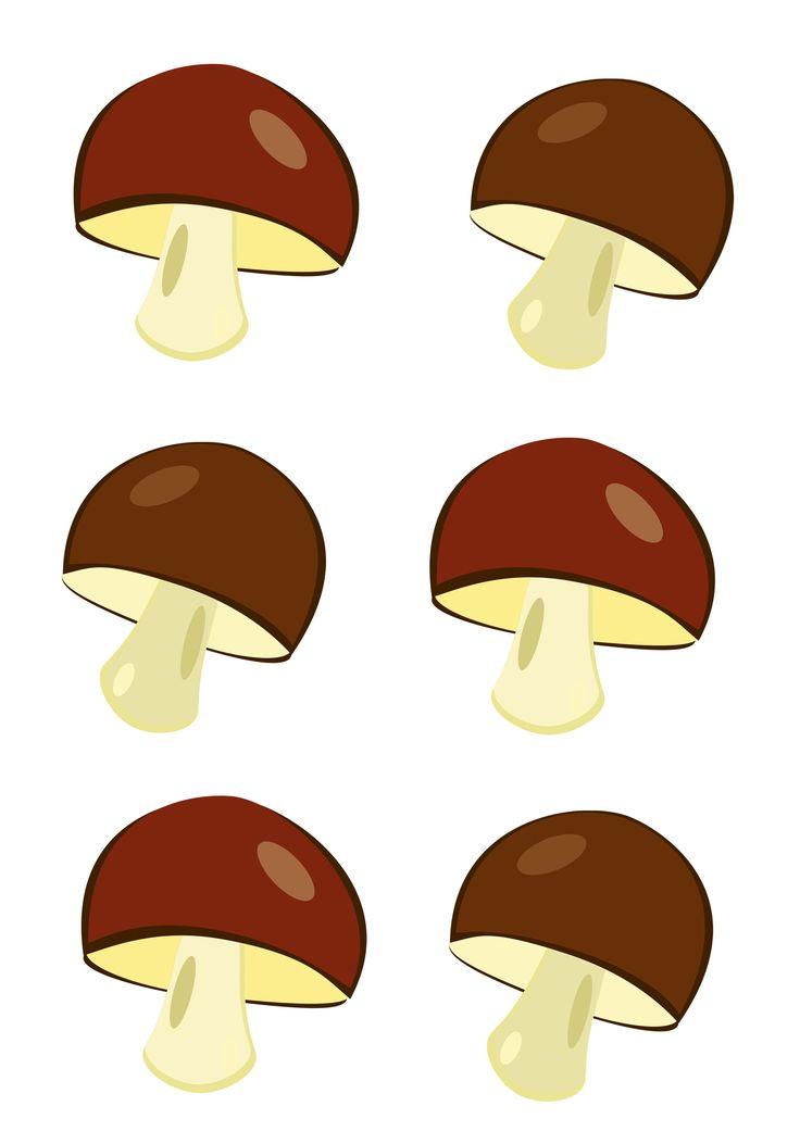 средний грибы картинки счетный материал быть, кадр