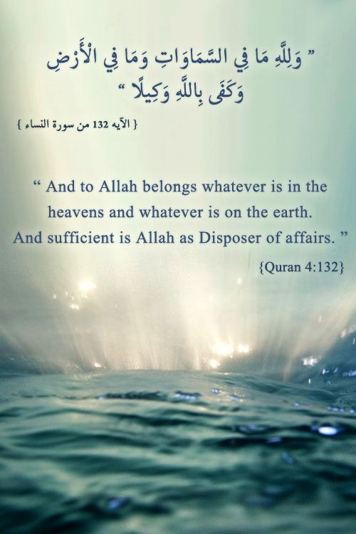 DesertRose///Indeed, Allah is The One and The Only Creator.