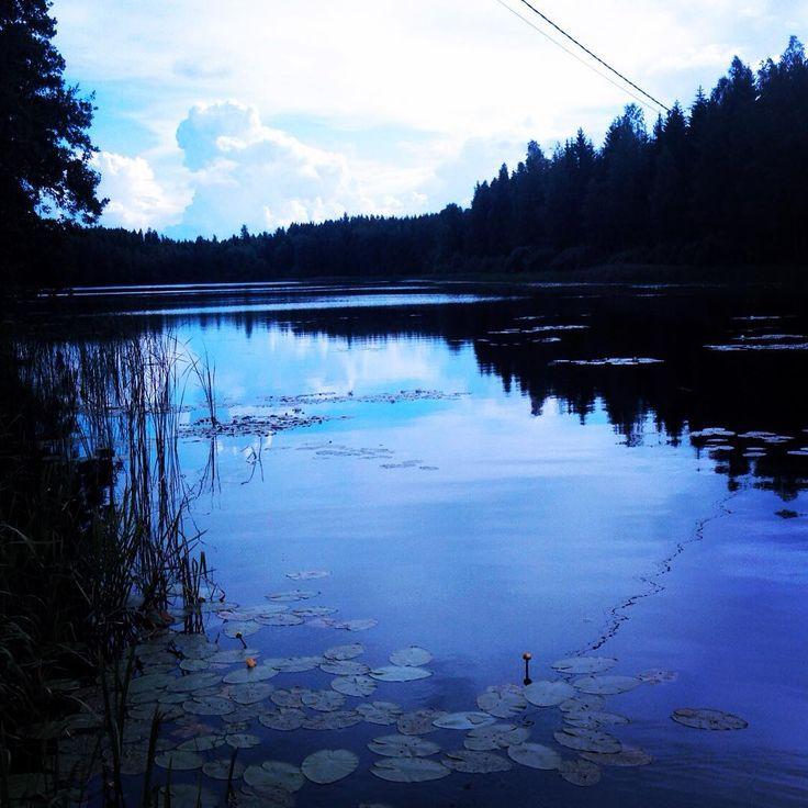 Lammijärvi 2015