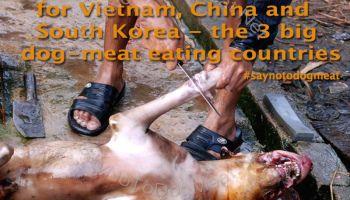 Cambodia: Tourist Destination For Dog Eaters
