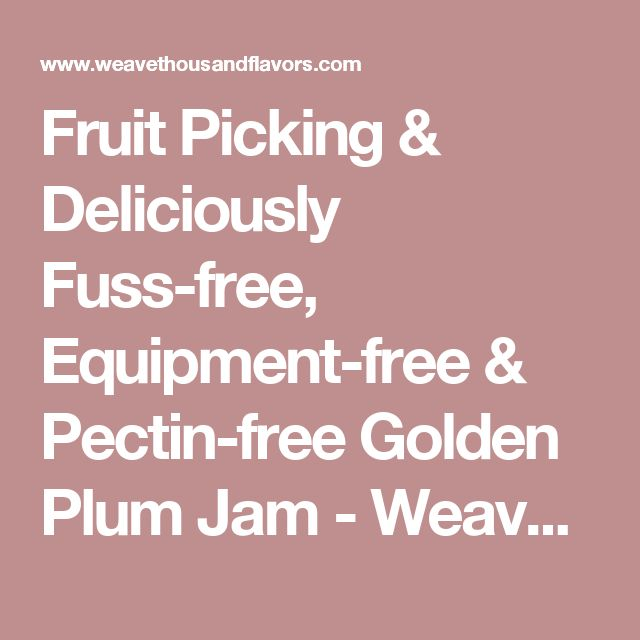 Fruit Picking & Deliciously Fuss-free, Equipment-free & Pectin-free Golden Plum Jam - Weave a Thousand Flavors