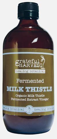 Fermented Milk Thistle