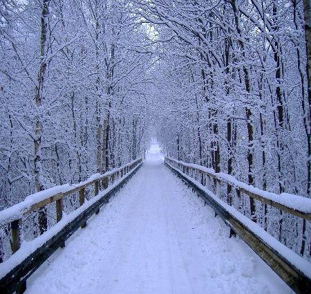 Snowy Bridge | winter | Winter wonderland pictures ...