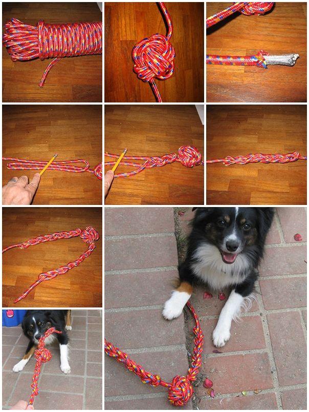 DIY Monkey Paw Dog Toy Diy dog toys, Homemade dog toys