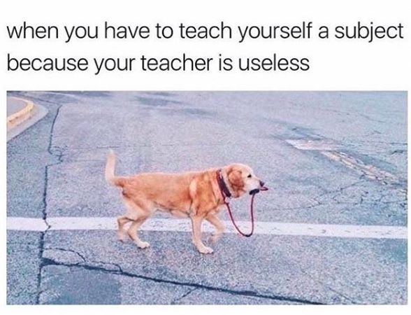 Just 100 Hilarious Memes For Anyone Who's Gone To University