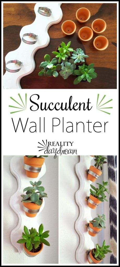 Vertical Succulent Wall Planter Tutorial - Reality Daydream