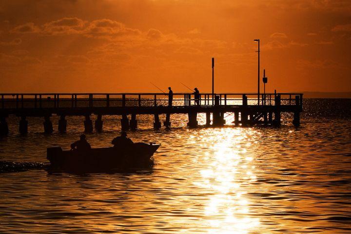 Wellington Point Fishing Trip