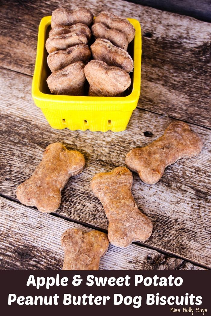 Made with real apples, sweet potato, and peanut butter, these healthy homemade Apple & Sweet Potato Peanut Butter Dog Biscuits are sure please any pooch!