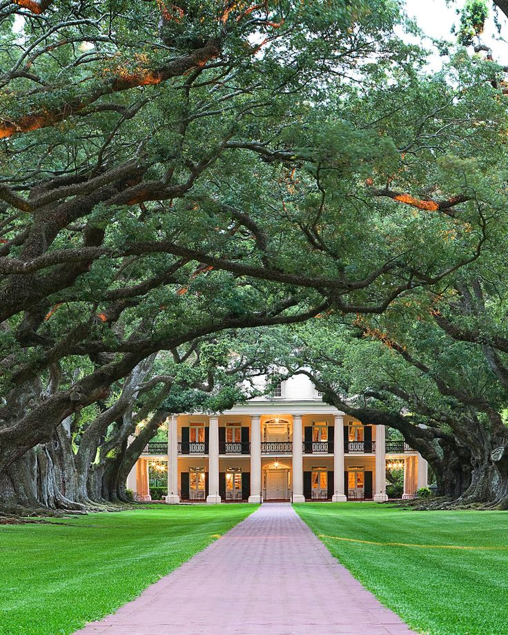 outdoor wedding venues dfw texas%0A Where  Oak Alley Plantation  Vacherie  LA The Details  The epic adaptation  of Anne Rice u    s novel features Oak Alley as the home of Brad Pitt u    s  character