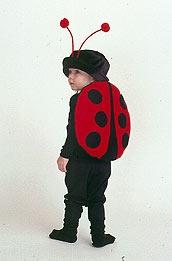 Ladybug costume  For Julia?
