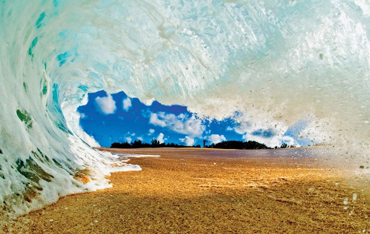 Waves of North Shore / Clark Little