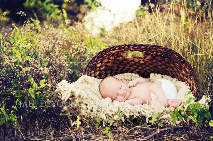 baby in a basket outside - Google Search