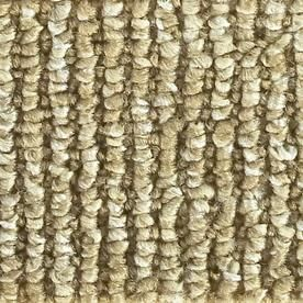 �Sisal Sand Dollar Indoor/Outdoor Carpet - for the back steps